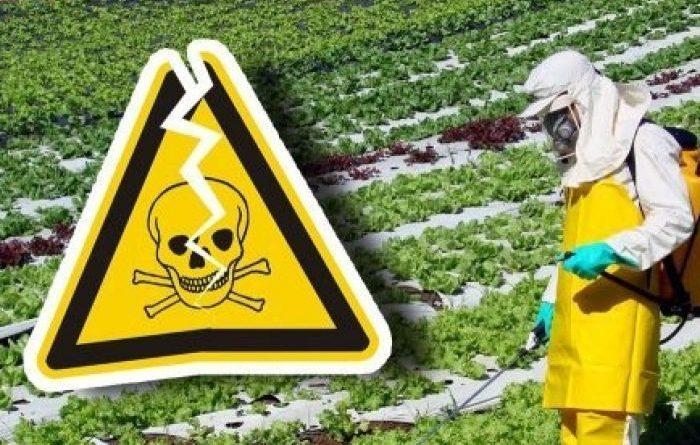 Governo da morte: Agronegócio e Bolsonaro querem liberar mais 4 mil agrotóxicos